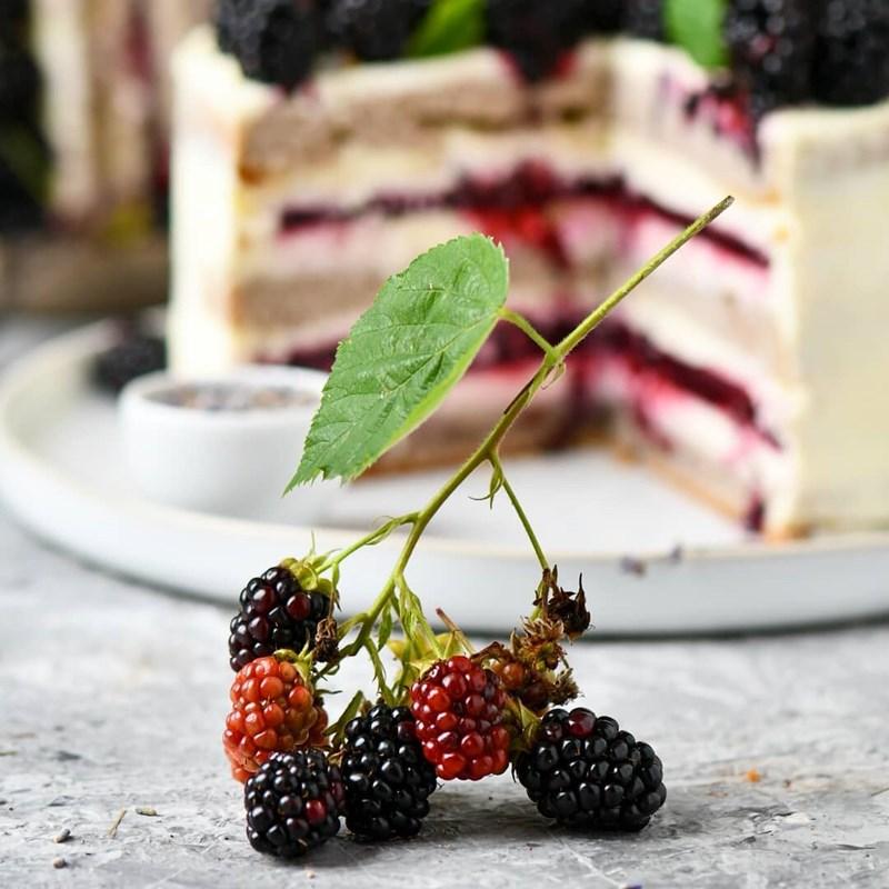 BLACKBERRY & LAVENDER CAKE-4