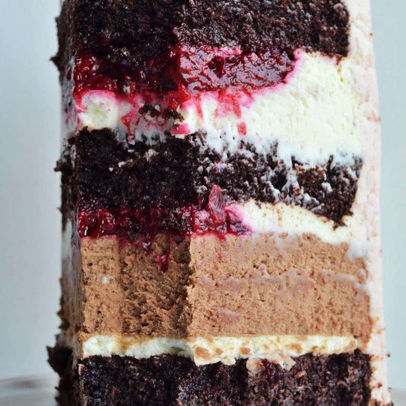 RASPBERRY & LINGONBERRY CAKE WITH CHOCOLATE MOUSSE-5