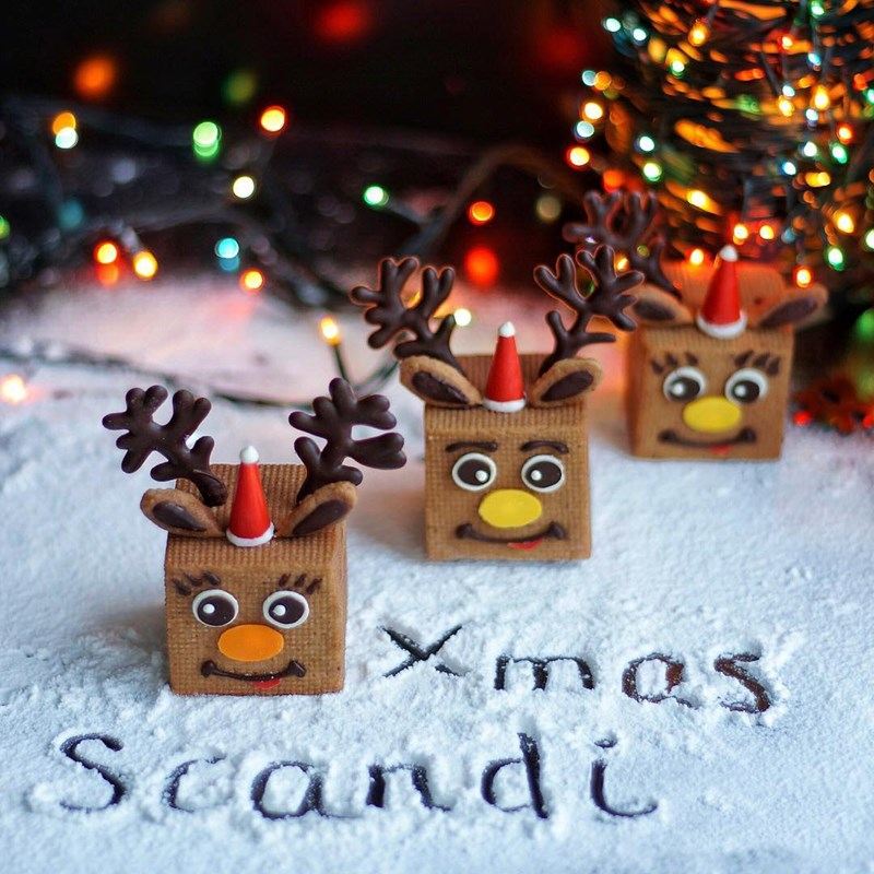 CHRISTMAS SURPRISE COOKIES-3
